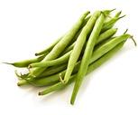 Fresh Crisp Green Beans