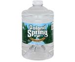Poland Spring Water 3 Liter