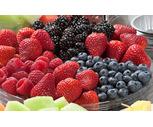 Fresh Mixed Berry Sampler