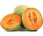 Fresh Large Sweet Cantaloupes