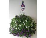 10'' Flowering Hanging Baskets