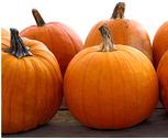 Large Face Pumpkins