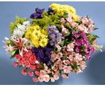 Assorted Designer Fresh Flower Bunches