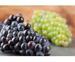 Fresh California Green or Black Seedless Grapes