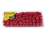 Driscoll's Sweet Raspberries or Blackberries 12 oz.