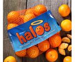 Fresh Sweet Halos 3 Lb. Bag