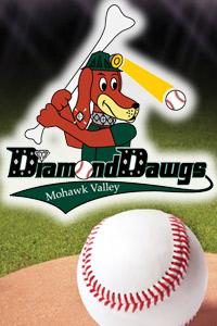Price Chopper is proud to support the Diamond Dawgs 2017 Baseball season!