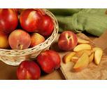 Fresh Sweet Jersey Peaches or Nectarines