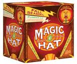 Magic Hat 12 Pack