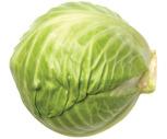Fresh Northeast Green Cabbage
