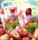 Tote Apples