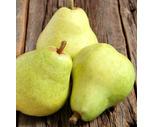 Fresh California Red or Green Bartlett Pears