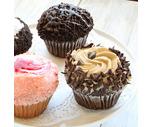 Large Gourmet Cupcakes