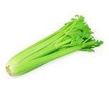Fresh Crisp Celery Bunch