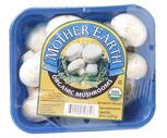 Fresh Organic White Mushrooms 8 oz.