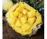Fresh Sweet Pineapples